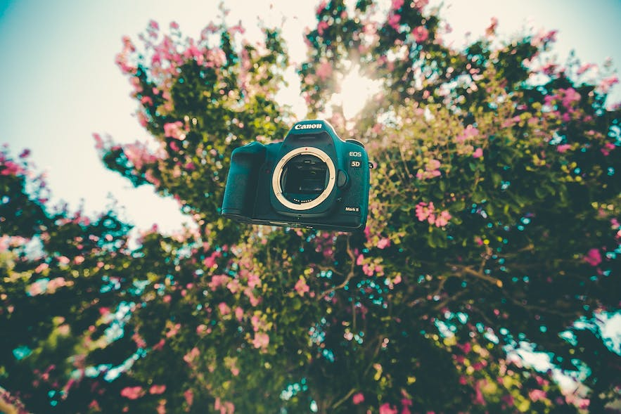 A camera floats with a tree in the background   DSLR Accessories