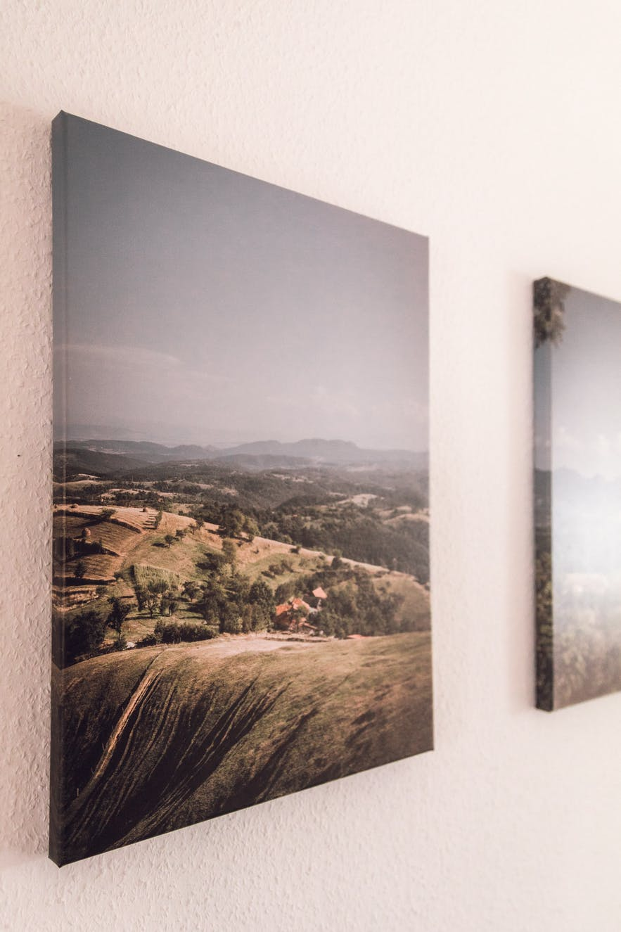 Beginner's Guide to Home vs Lab Printing for Photography